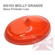 BS103 Molly Orange 900ml