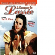 A CORAGEM DE LASSIE / COURAGE OF LASSIE - Fred M. Wilcox